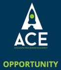ACE logo 262x300