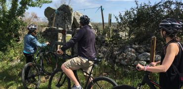Bike rent and tours