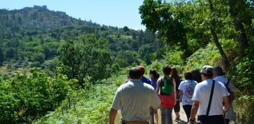 Historical or nature walking tours