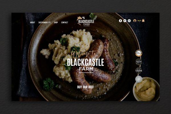 blackcastle website