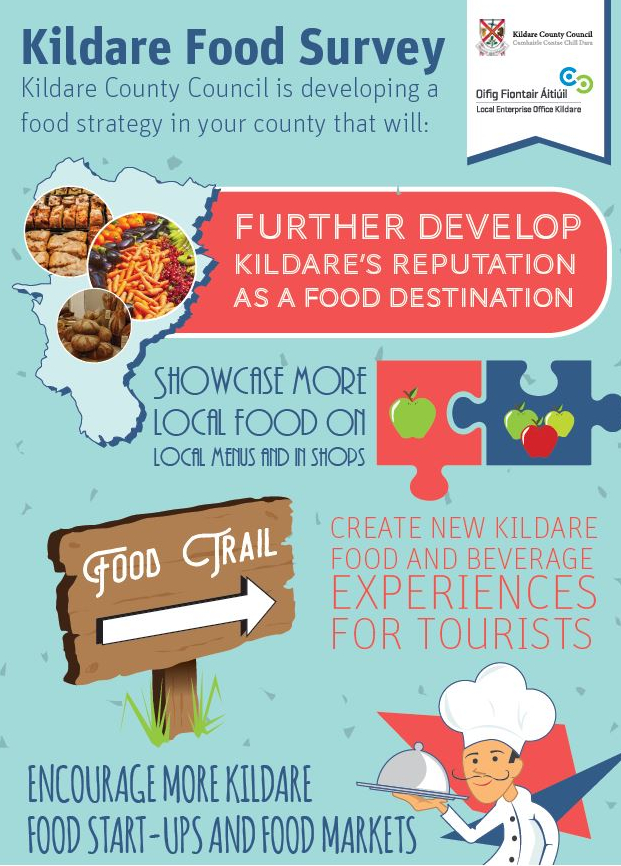Kildare Food Survey